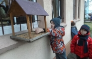 2013-12-11 - Motylki - Dokarmiamy ptaki