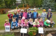 2014-09-09 - Żabki - Zbieramy plony z naszego ogródka i oddajemy pani Anetce do obiadu
