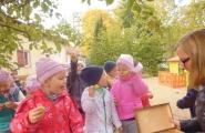 2015-10-05 - Kotki - Poznajemy jabłoń i smak jabłka