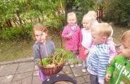 2016-09-05 - Biedronki - Zebraliśmy plony z naszego ogródka