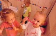 2016-09-19 - Kotki - Dbamy o zęby