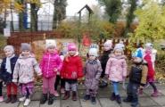 2016-10-24 - Biedronki - W poszukiwaniu jesieni