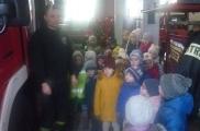 2016-12-23 - Sowy, Mrówki, Motyle - Wycieczka do Straży Pożarnej
