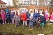 2017-03-31 - Kotki - Zakładamy ogródek