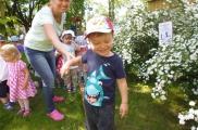 2017-05-23 - Kotki - Szukamy kropek biedronki