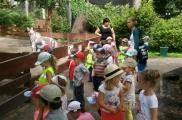 2017-07-18 - Biedronki - Wycieczka do Ogrodu Zoobotanicznego