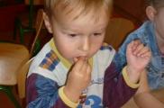 2017-09-21 - Kotki - Smakujemy marchewki z przedszkolnego ogródka
