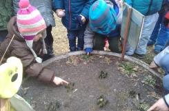 2018-03-05 - Biedronki - Przedwiośnie w ogrodzie