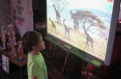 2018-04-10 - Motylki - Uczymy się zoologii przy tablicy interaktywnej