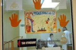 2018-05-05 - Sowy - Nasze prace w Szpitalu na Bielanach w ramach