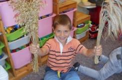 2018-09-17 - Mrówki - Poznajemy różne rodzaje zbóż