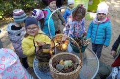 2018-10-01 - Biedronki - Szukamy oznak jesieni