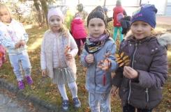 2018-10-01 - Sowy - Szukamy jesieni