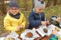 2018-10-08 - Kotki - Święto pieczonego ziemniaka