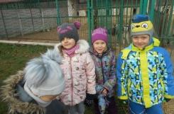 2018-11-28 - Motylki - Wizyta w schronisku