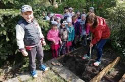 2019-05-10 - Mrówki - Kopiemy, grabimy, siejemy. sadzimy w naszym ogródku