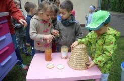 2019-05-23 - Mrówki - Lekcja pszczelarstwa