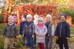 2019-10-17 - Żabki - Jesienny spacer