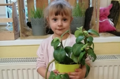2020-02-06 - Kotki - Zielono w naszym ogródku