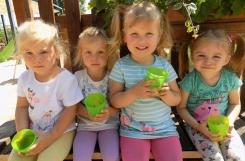2020-07-14 - Żabki - W przedszkolnym ogrodzie