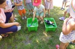 2020-08-13 - Żabki - Łowimy ryby