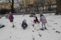 2021-01-05 - Sowy - Zabawy na śniegu