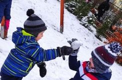 2021-01-07 - Kotki - Zabawy na śniegu