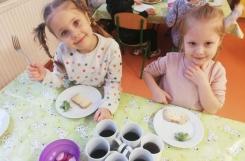 2021-02-17 - Mrówki - Zjadamy kiełki i rzeżuchę z naszego kącika zieleni