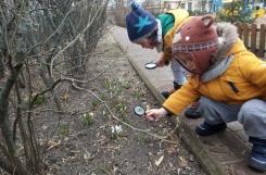 2021-03-15 - Żabki - Wiosna w ogrodzie przedszkolnym