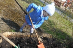 2021-04-18 - Kotki - Zakładamy ogródek