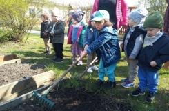 2021-04-21 - Żabki - Bawimy się w ogrodnika