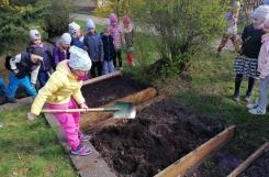 2021-04-22 - Sowy - Zakładamy ogródek warzywny