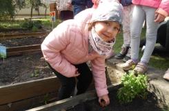 2021-04-28 - Mrówki - Nasz ogródek ziołowo-kwiatowy