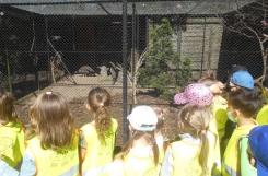 2021-05-13 - Sowy - Wycieczka do Ogrodu Zoobotanicznego