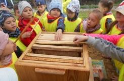 2021-05-28 - Sowy - Warsztaty o pszczołach - Fundacja Leśna Droga