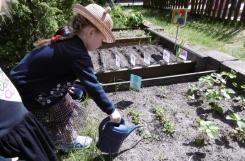 2021-05-31 - Żabki - Dbamy o ogródek