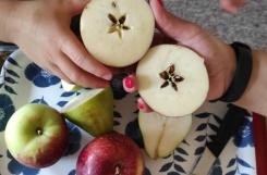 2021-09-13 - Biedronki - Poznajemy owoce