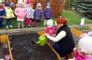 2016-04-28 - Kotki - Zakładamy ogród warzywny